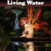 Living Water  5 Differences