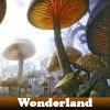 Wonderland 5 Differences
