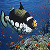 Alone clown fish slide puzzle