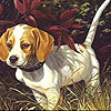 Alone dog in the woods puzzle
