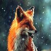 Alone wild wolf slide puzzle