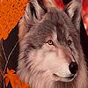 Autumn  wolf slide puzzle