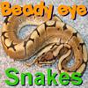 Beady Eye – Snakes