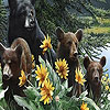 Bear family and flowers puzzle