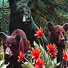 Bear family in the jungle slide puzzle