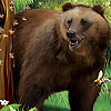 Bear in the forest slide puzzle