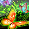Beautiful butterflies puzzle