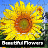 Beautiful Flowers Puzzle