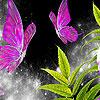 Beautiful garden butterflies puzzle