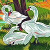 Beautiful swans slide puzzle