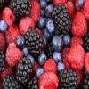 Berries Slider