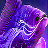 Big purple fish slide puzzle