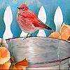 Bird in the bucket slide puzzle