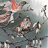 Birds on a tree slide puzzle