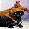 Black cat and snow slide puzzle