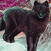 Black Jungle wolves puzzle