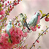 Blue birds  on the branch slide puzzle