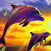 Blue dolphins in island puzzle