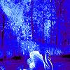 Blue dream swan puzzle