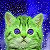 Blue eyes cat slide puzzle