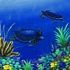 Blue sea turtle puzzle