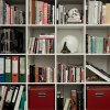 Bookshelves of Mystery Hidden Objects