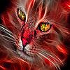 Bright cats puzzle