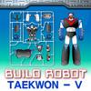 Build TaeKwon V