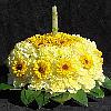 Carnation Cake Jigsaw