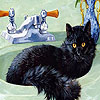Cat in the bath slide puzzle