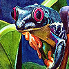 Colorful lake frogs puzzle