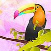 Colorful toucan puzzle