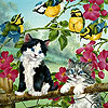 Crazy cats and birds slide puzzle
