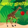 Crazy Giraffe!