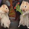 Cute mice slide puzzle