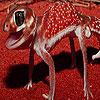 Cute red lizard puzzle