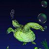 Dark turtles hidden numbers
