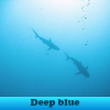 Deep blue. Find objects
