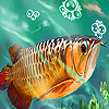 Deep sea tropical fish slide puzzle