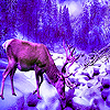 Deer in the winter puzzle