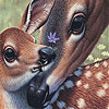 Deers and lovely day slide puzzle