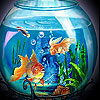 Dream fishes slide puzzle