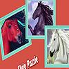 Dream horses puzzle