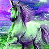 Dream Unicorns puzzle