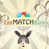 Egg Match Bunny