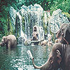 Elephants in the sea slide puzzle