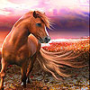 Fantastic horse slide puzzle