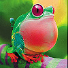 Fat red frog slide puzzle