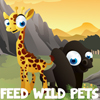 Feed Wild Pets