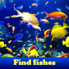 Find fishes. Find objects